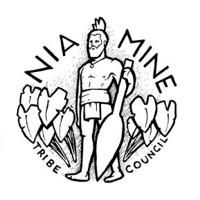 niamine